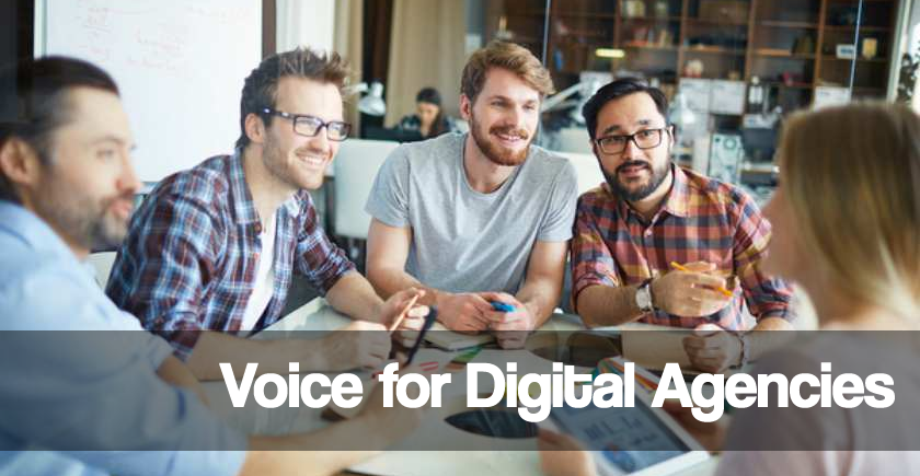 voice AI for Digital ad agencies with Alexa Voice Skills and Google Voice Skills